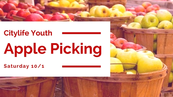 youth-apple-picking